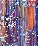 Bernard Frize (Contemporary Painters)