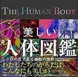 美しい人体図鑑 (一般書)