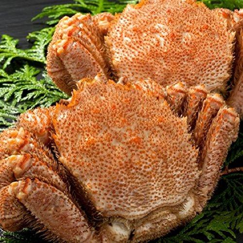 毛ガニは上司へのおすすめの食べ物でプレゼントに最適