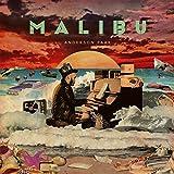 Malibu [12 inch Analog]