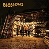 BLOSSOMS [12 inch Analog]