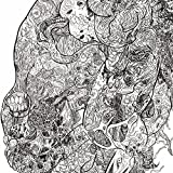 Demiurge : Visions of Pseudo-Universe