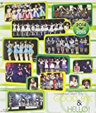 Hello!Project COUNTDOWN PARTY 2014 ~ GOOD BYE & HELLO!~ [Blu-ray]