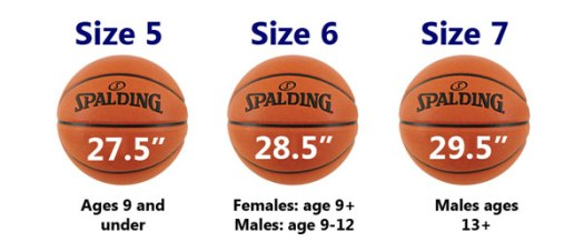Image result for Official Basketball Size