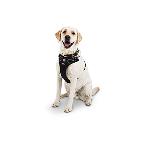 Good2Go Black Front Walking Dog Harness, Medium