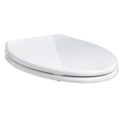 Pleasant American Standard 5283 110 020 Cadet Elongated Front Slow Close Easy Lift Toilet Seat White Trusted E Blogs Gmtry Best Dining Table And Chair Ideas Images Gmtryco