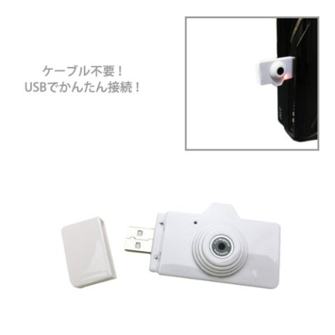 Swimming Fly Sominin USB端子 接続したところ