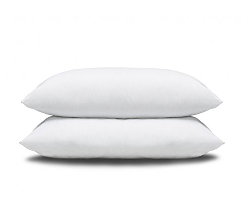 Pacific Coast Pillows - Featured in Many Hotels (2 King Pillows)