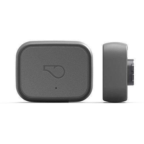 Whistle 3 / GPS Pet Tracker & Activity Monitor / Grey