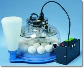 Lyon Tx6 Auto Turn Egg Incubator