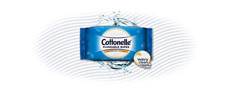 Cottonelle FreshCare Flushable Wipes for Adults, Wet Wipes, Alcohol Free, 336 Wet Wipes per Pack (Eight 42-Count Resealable Soft Packs) deal 50% off 31Q9gcHEbML