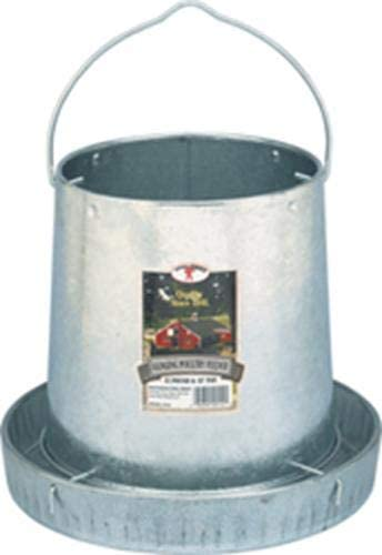 Best Poultry Feeder