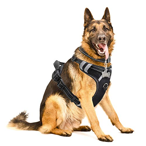 WINSEE Dog Harness No-Pull Pet Harness with Dog Collar & Front/Back Leash Clips...