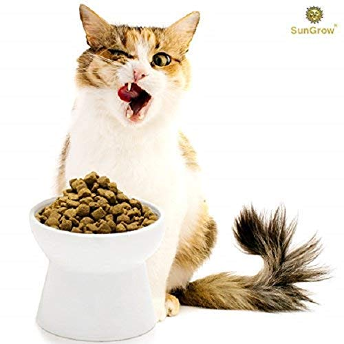 Cat Bowl with Stand - Suitable Eating Height for Pets – Easy Cleaning for You – Eco-Friendly, Raised Food Bowl – Stress-Free Meal time for Your Cats - Stoneware Feeding Station 1