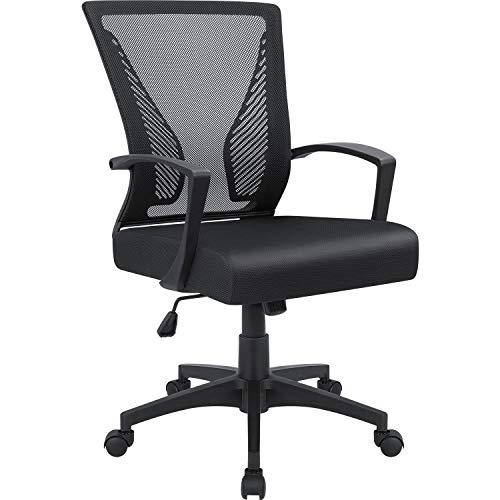 Furmax Office Chair Lumbar Support