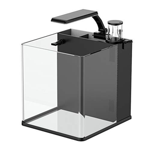 GankPike-45-Gallon-Saltwater-Aquarium-Marine-Fish-Tank-Reef-Tank-with-Pump-and-Protein-Skimmer