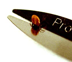 Pro-Tick Remedy  Image 3