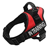 TOPPLE in Training Vest Harness-Reflective Vest with Comfortable Handle for Medium Large Dogs,Purchase Come with 2 Pairs of Reflective Patches-L