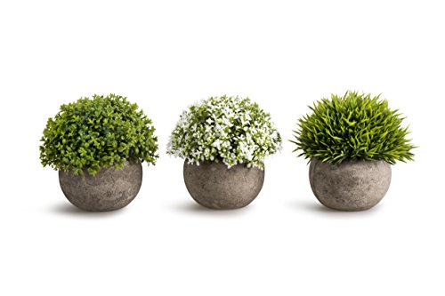 OPPS Artificial Plastic Mini Plants Unique Fake Fresh Green Grass Flower in Gray Pot for Home Décor - Set of 3