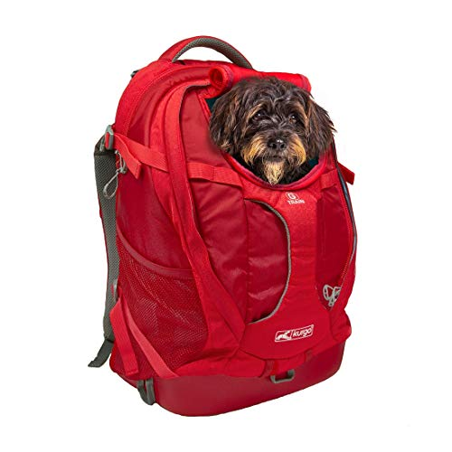 Kurgo Dog Carrier Backpack for Small Pets - Dogs & Cats | TSA Airline Approved | Cat | Hiking or Travel | Waterproof Bottom | G-Train | K9 Ruck Sack | Red | Grey 1