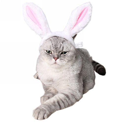 ZTL Cute Rabbit Bunny Ears Headband for Dog Cat Pet Halloween Christmas Party Costume Accessories 1