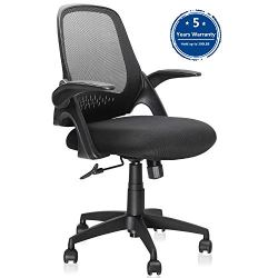 Ergousit Mid-Back Mesh Office Chair, Ergonomic Desk Chairs Swivel Computer Task Chairs with Adjustable Height and Flip-up Armrest – Lumbar Support and Sponge Cushion in Black (Black)