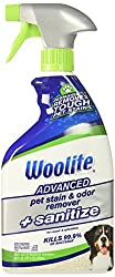 Woolite Advanced Pet Stain & Odor Remover-Best for Pet Stains