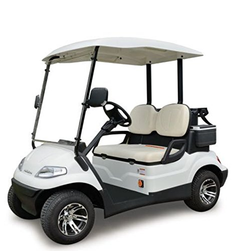 ICON i20 Electric Street Legal Golf Cart