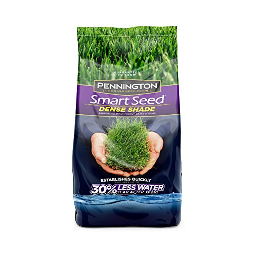 Pennington 100526625 Smart Seed Dense Shade Grass Seed, 3 LB