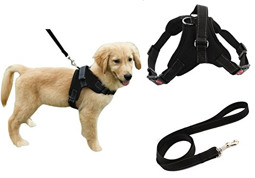 Heavy Duty Adjustable Pet Puppy Dog Safety Harness with Leash Lead Set Reflective No-Pull Breathable Padded Dog Leash Collar Chest Harness Vest with Handle for Small Medium Large Dogs Training Walking 1