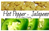 Jalapeno Seeds - Jalapeno M - Hot, Spicy Pepper - Heirloom - Liliana's Garden