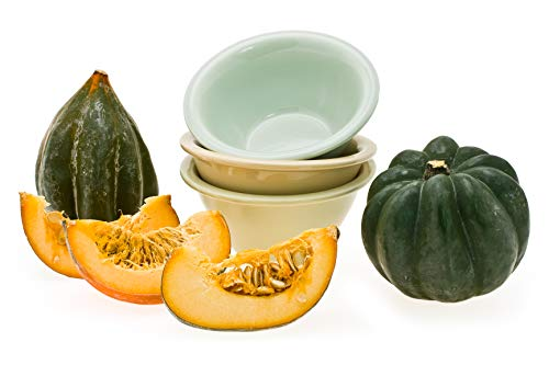 Winter Squash Honey Bear Hybrid Seeds Non-GMO