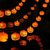 MILEXING Halloween String Lights, LED Pumpkin Lights, Holiday Lights for Outdoor Decor,2 Modes Steady/Flickering Lights(20 One Pumpkin Lights, 9.8 feet)