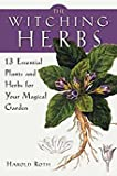 Fortune Telling Toys Witching Herbs 13 Essential Plants and Herbs For Your Magical Garden