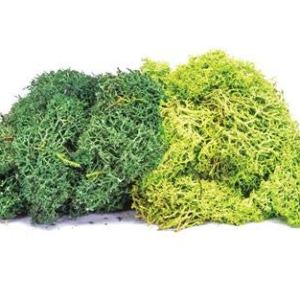 Hornby R7195 Lichen – Large Green Mix Scenic Materials, Multi 41FPzmfKxIL