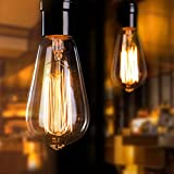 6-Pack Edison Light Bulb 60 watt Antique Vintage Light Bulb E26/E27 Base Dimmable Replacement Bulbs for Wall Sconces Lights, Antique Squirrel Cage Lights, Amber Warm