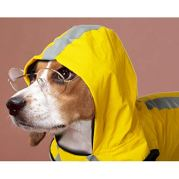 FairyMe-Dog-Raincoat-Lightweight-Packable-Yellow-Rain-Coat-Jacket-Waterproof-Dog-Poncho-with-Reflective-Stripes-rc-Pets-Doggie-Raincoat-for-Small-Medium-Large-Dogs