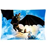 Rdkekxoel Custom How to Train Your Dragon Pattern 15 Pillowcase Cushion Cover Design Standard Size 18x18 inch