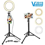 8' Ring Light with Stand & Cell Phone Holder for YouTube Video and Makeup, Selfie Light Ring for Live Stream/Photography, Compatible with iPhone Android,Remote Control