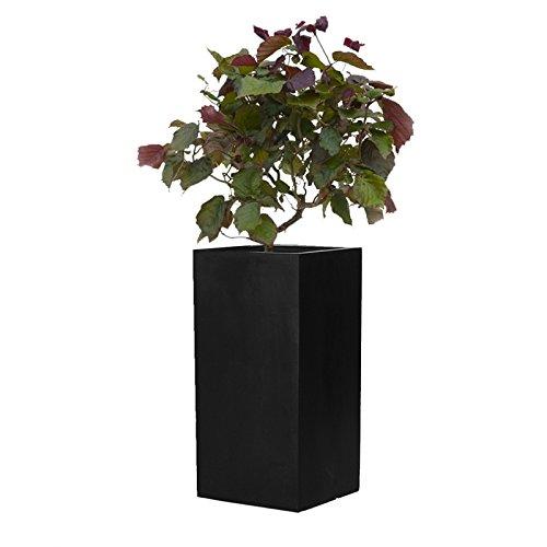 Un pot carré et en hauteur donnera une sensation de hauteur et d'agrandissement de votre place disponible sur votre terrasse