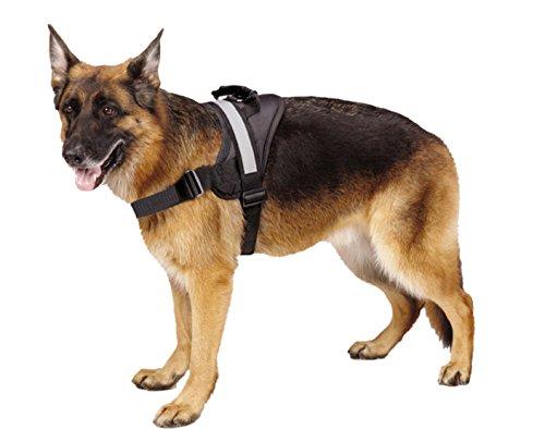 EXPAWLORER Big Dog Soft Reflective No Pull Harness 1
