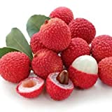 20 Seeds Lychee Seeds Outdoor Fruit Tree Seeds for home garden planting