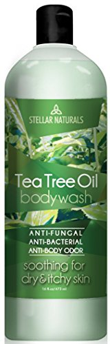 Antifungal Tea Tree Oil Body Wash - Antibacterial and Therapeutic - Tea Tree, Peppermint, Eucalyptus Oil - Helps with Athlete's Foot, Toenail Fungus, RingWorm, Body Itch, Acne, Body Odor - 16 ounces