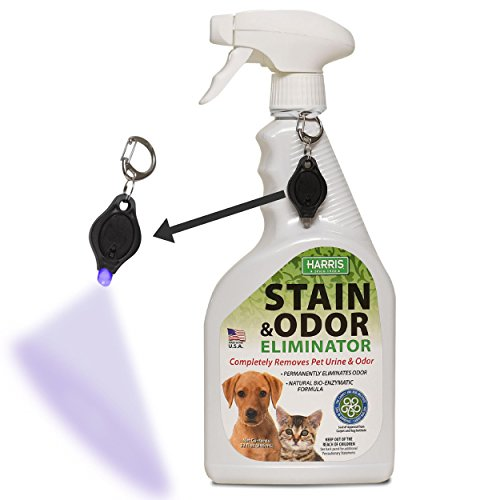 Harris Pet Stain and Odor Remover for Carpet, Enzyme Spray with Free Stain Detection Blacklight, 32oz for Dog and Cat Urine