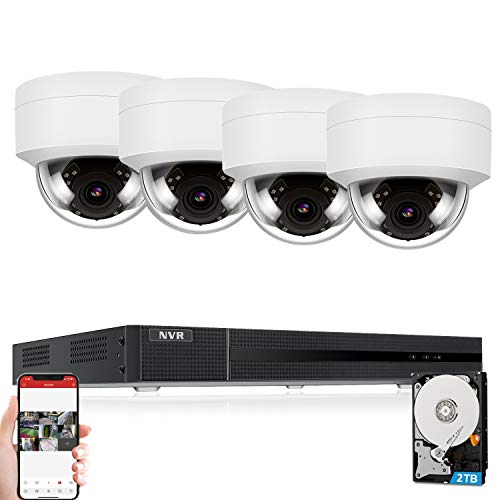 AudioAnpviz-5MP-IP-POE-Security-Camera-System-8CH-4K-H265-NVR-with-2TB-HDD-with-4-5MP-Outdoor-IP-POE-Dome-Cameras-Home-Security-System-with-Audio-Recording-Waterproof-98ft-Night-Vision-Free-APP