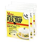 Victor M231 Ultimate Flea Trap Refills, (3 Packs of 3 refills)