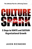 Culture Spark: 5 Steps to Ignite and Sustain Organizational Growth