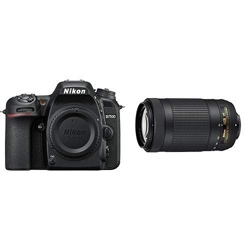 Nikon D7500 Dual Zoom Lens kit