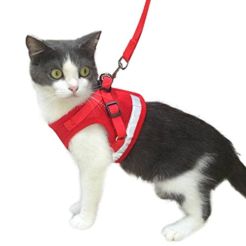 KZHAREEN Cat Harness with Leash for Kitty Puppy Small Dogs Animal Adjustable Soft Mesh