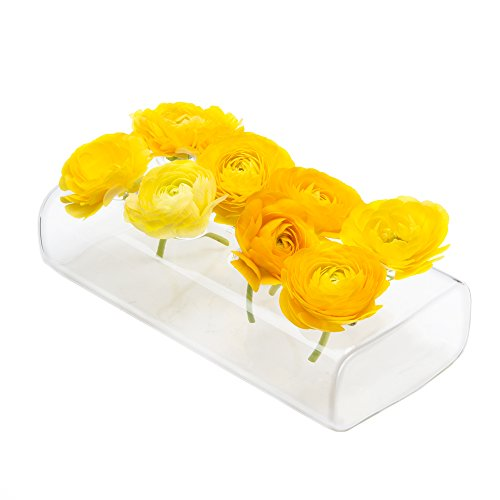 Chive - Hudson 8' Rectangular Unique Glass Flower Vase, Elegant Low Laying Clear Glass Bud Vase with 8 Holes for flowers